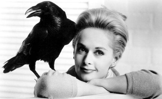 Tippi Hedren in the Birds - 1963