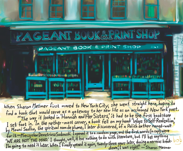 Pageant Bookstore by Bob Eckstein