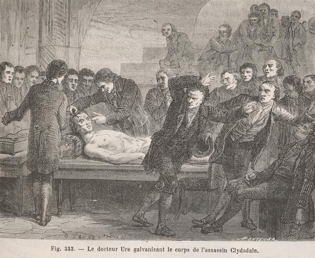 Figuier, Louis, 1819-1894. Les merveilles de la science, Paris