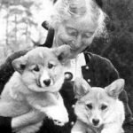 "Tasha Tudor and Her Beloved Corgis: ""How could you resist a Corgi?"""