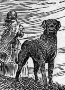 Illustration of Emily and her dog Keeper