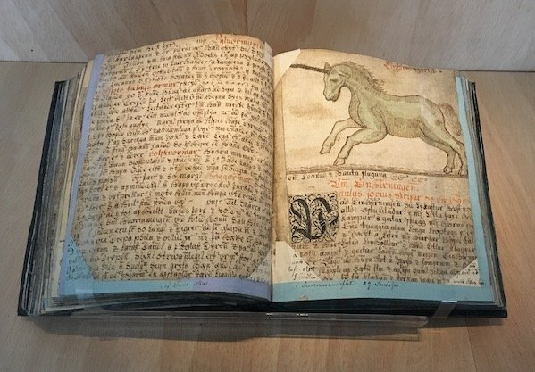 Unicorn book at Culture House, Reykjavik