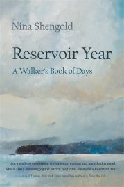 Reservoir Year by Nina Shengold