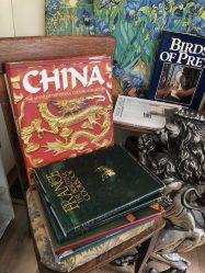 LionEyes art bookstore, Hobart book village, NY